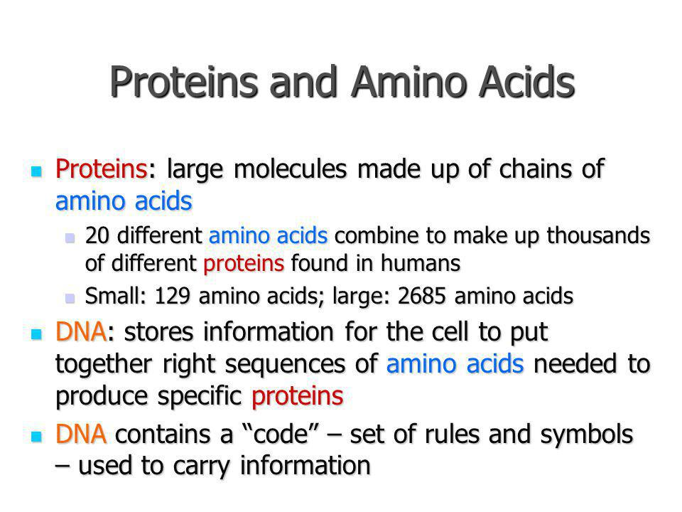 Proteins and Amino Acids Proteins: large molecules made up of chains of amino acids Proteins: large molecules made up of chains of amino acids 20 diff