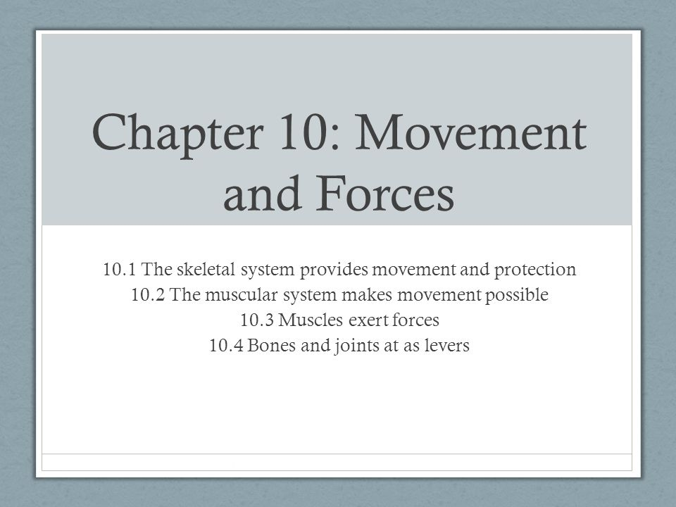 Chapter 10: Movement and Forces 10.1 The skeletal system provides movement and protection 10.2 The muscular system makes movement possible 10.3 Muscle