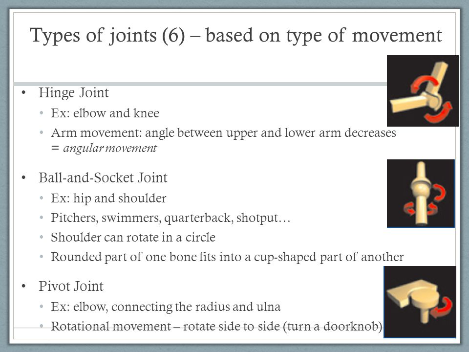 Types of joints (6) – based on type of movement Hinge Joint Ex: elbow and knee Arm movement: angle between upper and lower arm decreases = angular mov