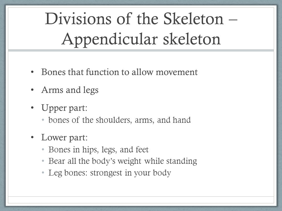 Divisions of the Skeleton – Appendicular skeleton Bones that function to allow movement Arms and legs Upper part: bones of the shoulders, arms, and ha