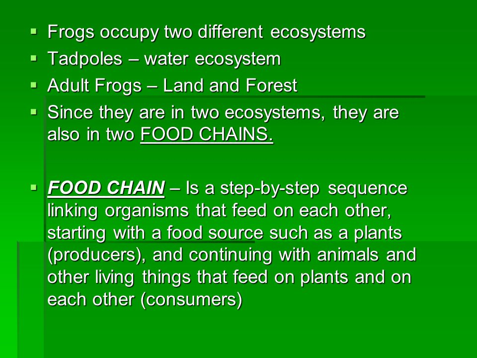  Frogs occupy two different ecosystems  Tadpoles – water ecosystem  Adult Frogs – Land and Forest  Since they are in two ecosystems, they are also
