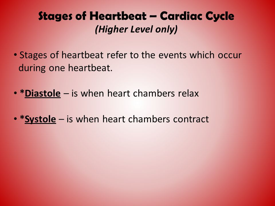 Stages of Heartbeat – Cardiac Cycle (Higher Level only) Stages of heartbeat refer to the events which occur during one heartbeat. *Diastole – is when
