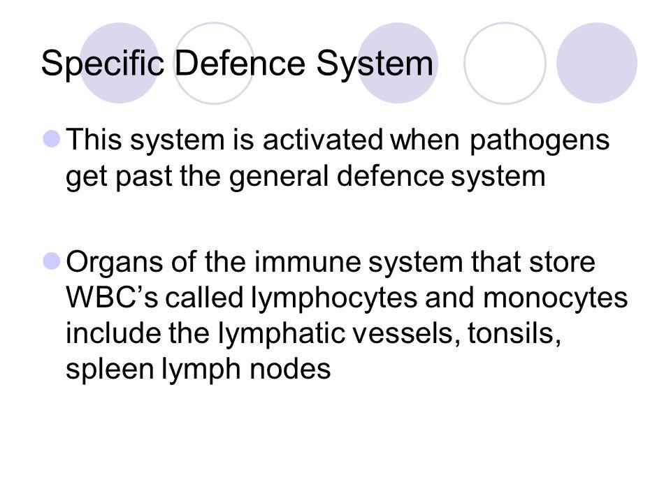 Suppressor T-cells Control ( suppress) the immune response Memory Cells Memory T- cells survive for life and memorise the immune response
