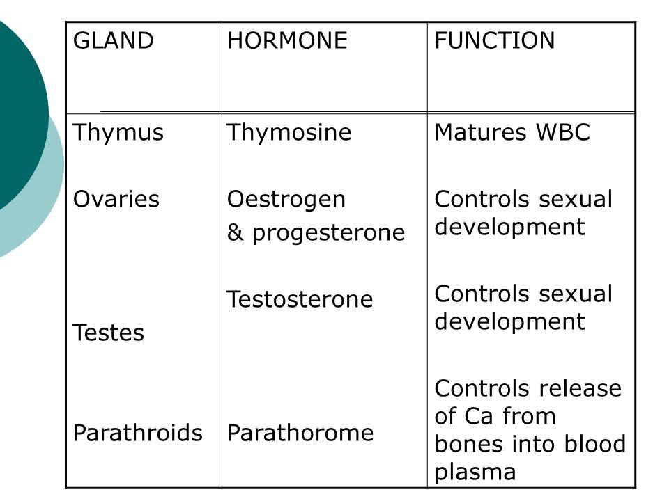 GLANDHORMONEFUNCTION Thymus Ovaries Testes Parathroids Thymosine Oestrogen & progesterone Testosterone Parathorome Matures WBC Controls sexual develop