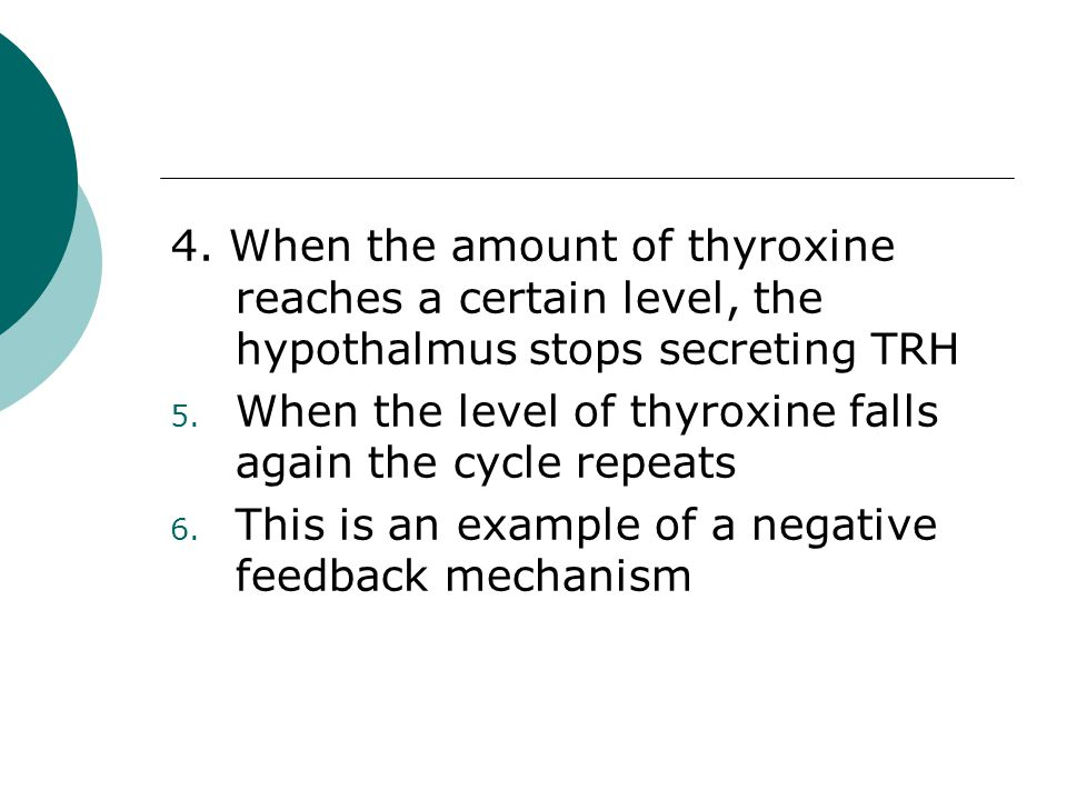 4. When the amount of thyroxine reaches a certain level, the hypothalmus stops secreting TRH 5. When the level of thyroxine falls again the cycle repe