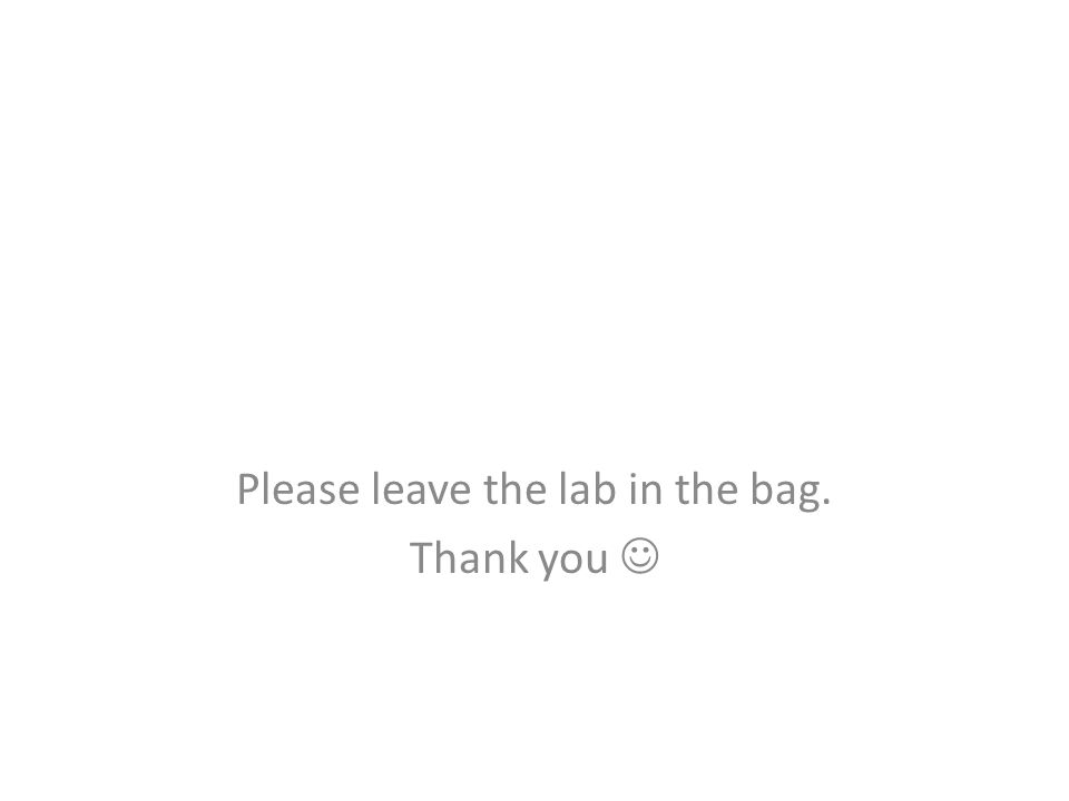 Please leave the lab in the bag. Thank you