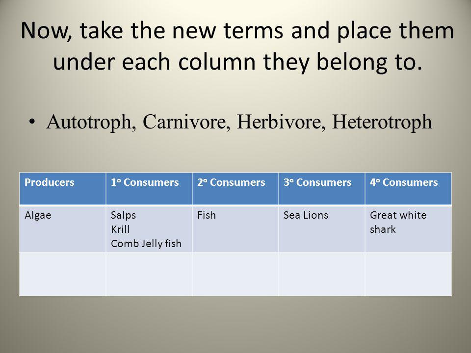 Now, take the new terms and place them under each column they belong to. Autotroph, Carnivore, Herbivore, Heterotroph Producers1 o Consumers2 o Consum