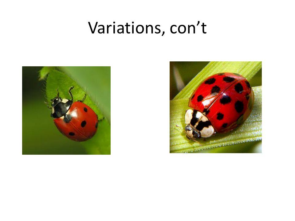 Variations, con't