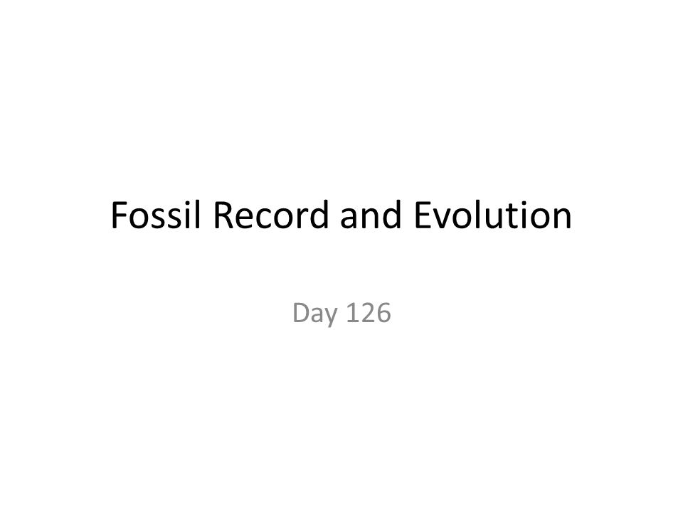 Fossil Record and Evolution Day 126
