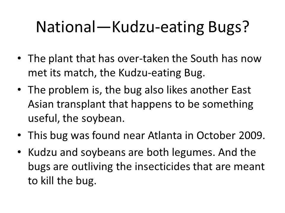 National—Kudzu-eating Bugs.
