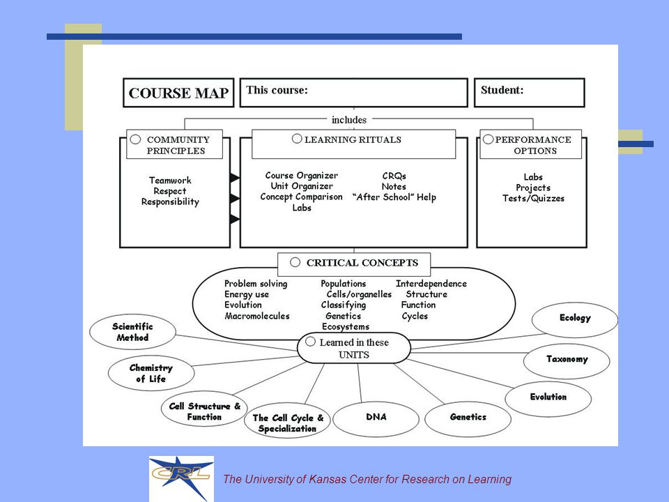 The University of Kansas Center for Research on Learning Planning for What is Critical Learning for ALL Students 1) What is the structure of a typical