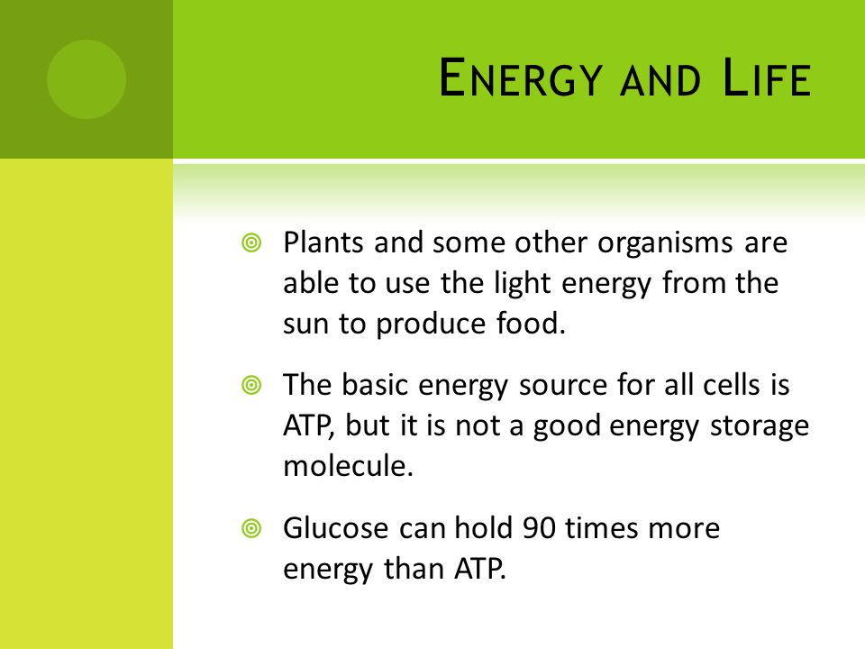 E NERGY AND L IFE  Plants and some other organisms are able to use the light energy from the sun to produce food.