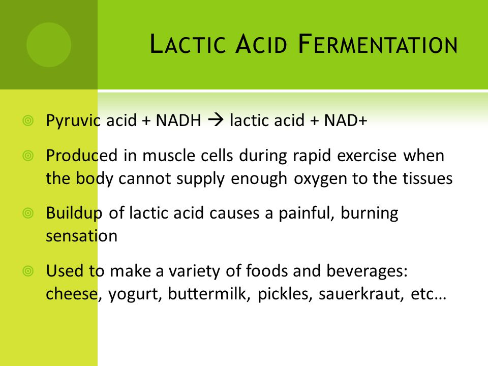 L ACTIC A CID F ERMENTATION  Pyruvic acid + NADH  lactic acid + NAD+  Produced in muscle cells during rapid exercise when the body cannot supply enough oxygen to the tissues  Buildup of lactic acid causes a painful, burning sensation  Used to make a variety of foods and beverages: cheese, yogurt, buttermilk, pickles, sauerkraut, etc…