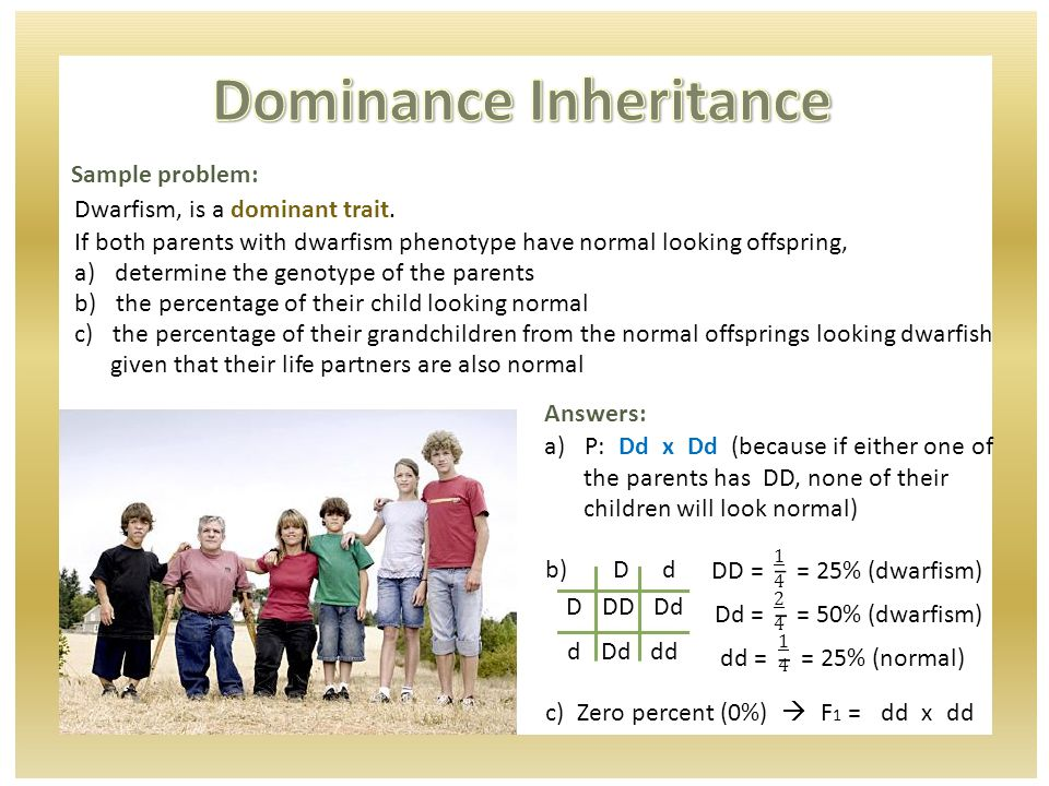 Sample problem: Dwarfism, is a dominant trait.