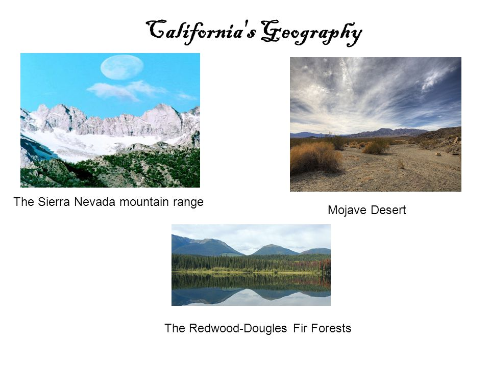 The Sierra Nevada mountain range California s Geography Mojave Desert The Redwood-Dougles Fir Forests