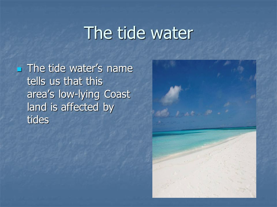 The tide water The tide water's name tells us that this area's low-lying Coast land is affected by tides The tide water's name tells us that this area