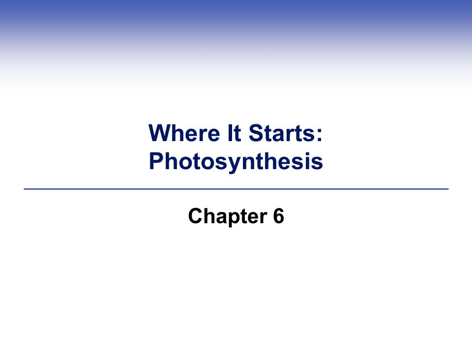 Where It Starts: Photosynthesis Chapter 6