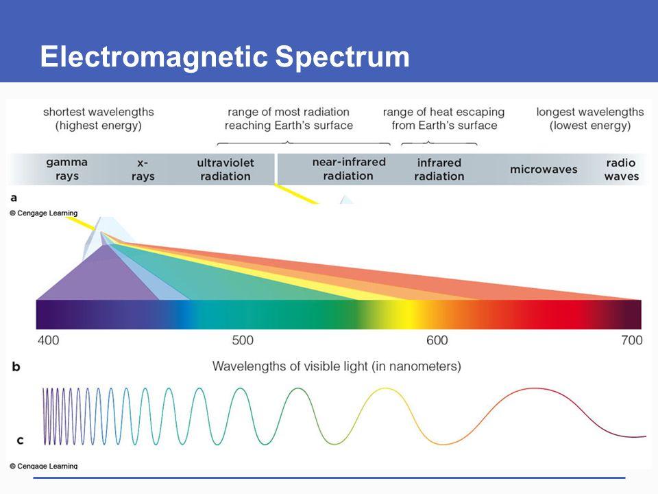 6.5 Energy Flow in Light-Dependent Reactions