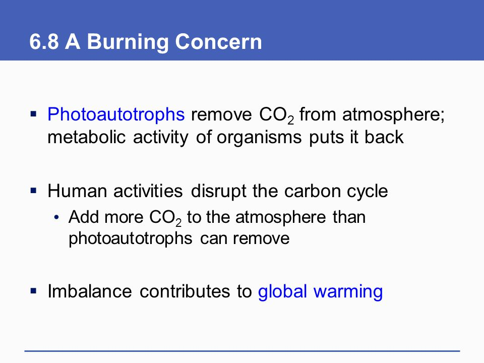 6.8 A Burning Concern  Photoautotrophs remove CO 2 from atmosphere; metabolic activity of organisms puts it back  Human activities disrupt the carbo