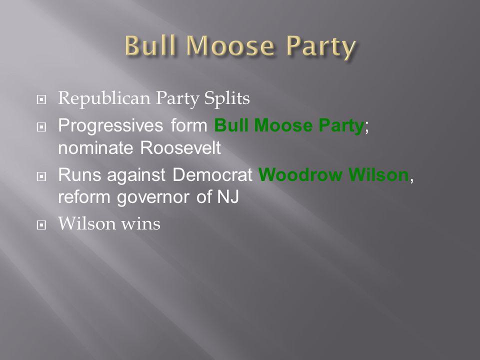  Republican Party Splits  Progressives form Bull Moose Party; nominate Roosevelt  Runs against Democrat Woodrow Wilson, reform governor of NJ  Wilson wins