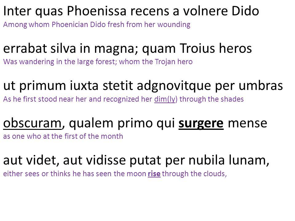 Inter quas Phoenissa recens a volnere Dido Among whom Phoenician Dido fresh from her wounding errabat silva in magna; quam Troius heros Was wandering
