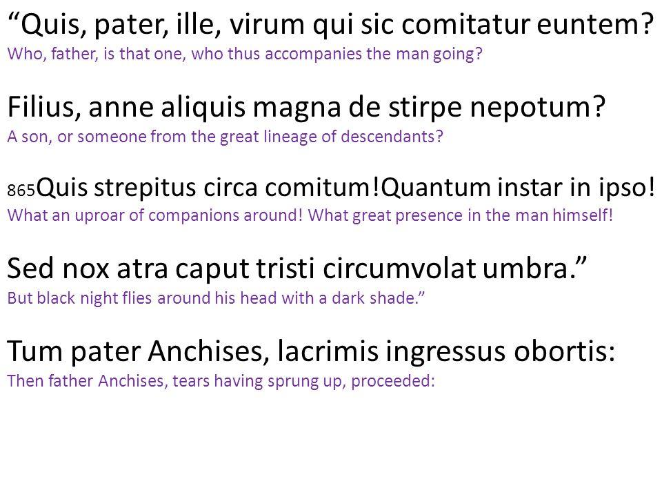 """""""Quis, pater, ille, virum qui sic comitatur euntem? Who, father, is that one, who thus accompanies the man going? Filius, anne aliquis magna de stirpe"""