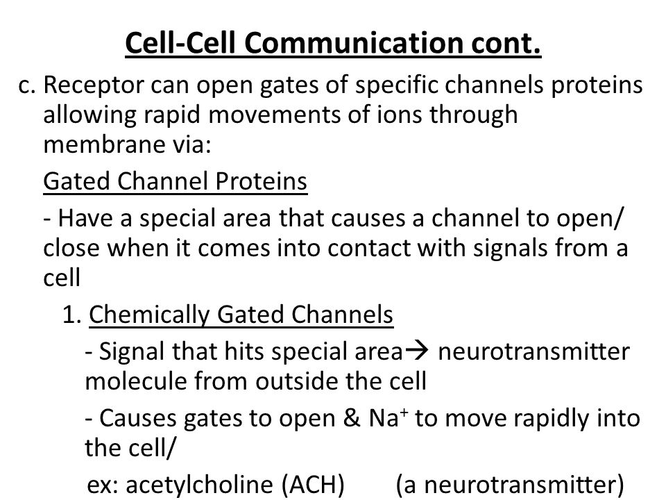 Cell-Cell Communication cont. c. Receptor can open gates of specific channels proteins allowing rapid movements of ions through membrane via: Gated Ch