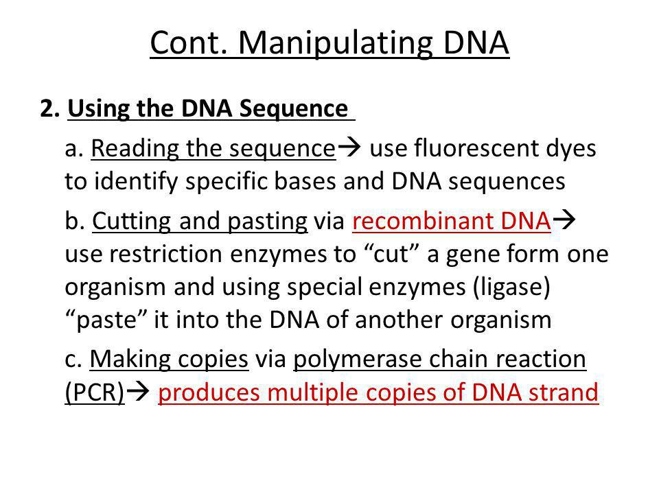 Cont. Manipulating DNA 2. Using the DNA Sequence a. Reading the sequence  use fluorescent dyes to identify specific bases and DNA sequences b. Cuttin