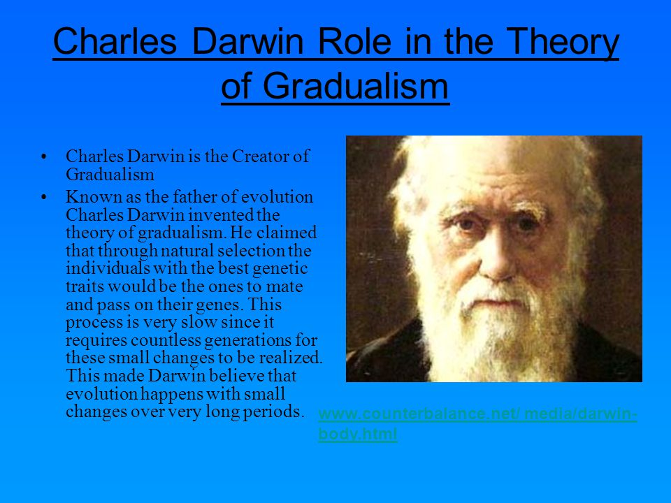 The Human example of Gradualism The best known example of gradualism may be the evolution of humans.