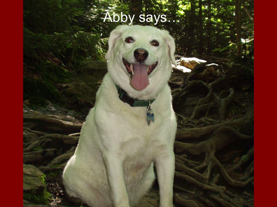 Abby says…