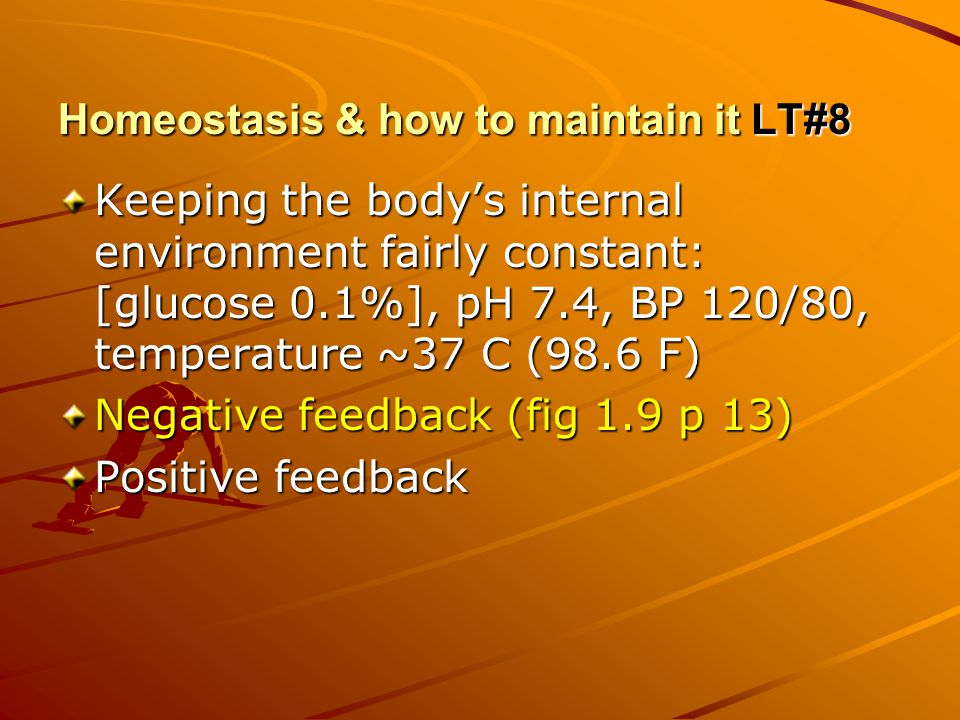 Homeostasis & how to maintain it LT#8 Keeping the body's internal environment fairly constant: [glucose 0.1%], pH 7.4, BP 120/80, temperature ~37 C (98.6 F) Negative feedback (fig 1.9 p 13) Positive feedback