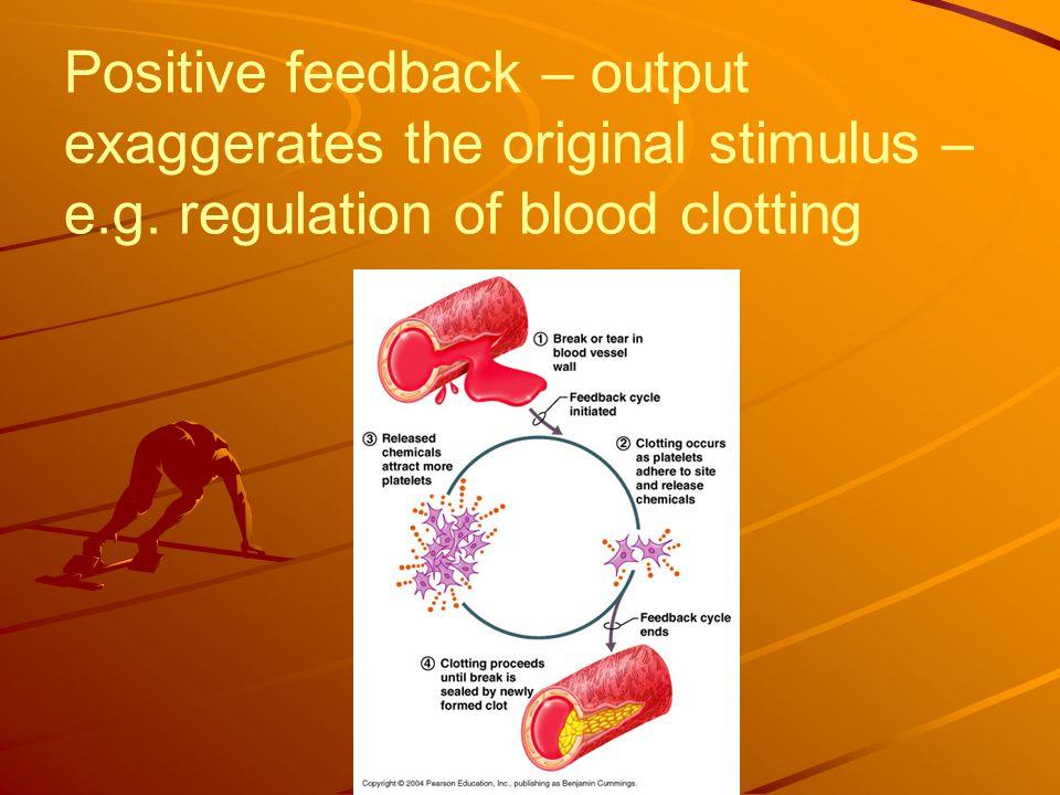 Positive feedback – output exaggerates the original stimulus – e.g. regulation of blood clotting