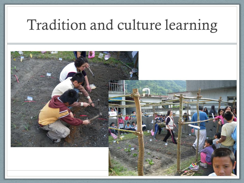 Tradition and culture learning