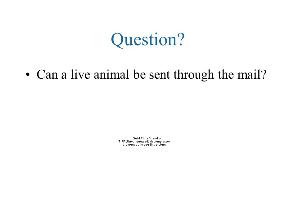 Question Can a live animal be sent through the mail