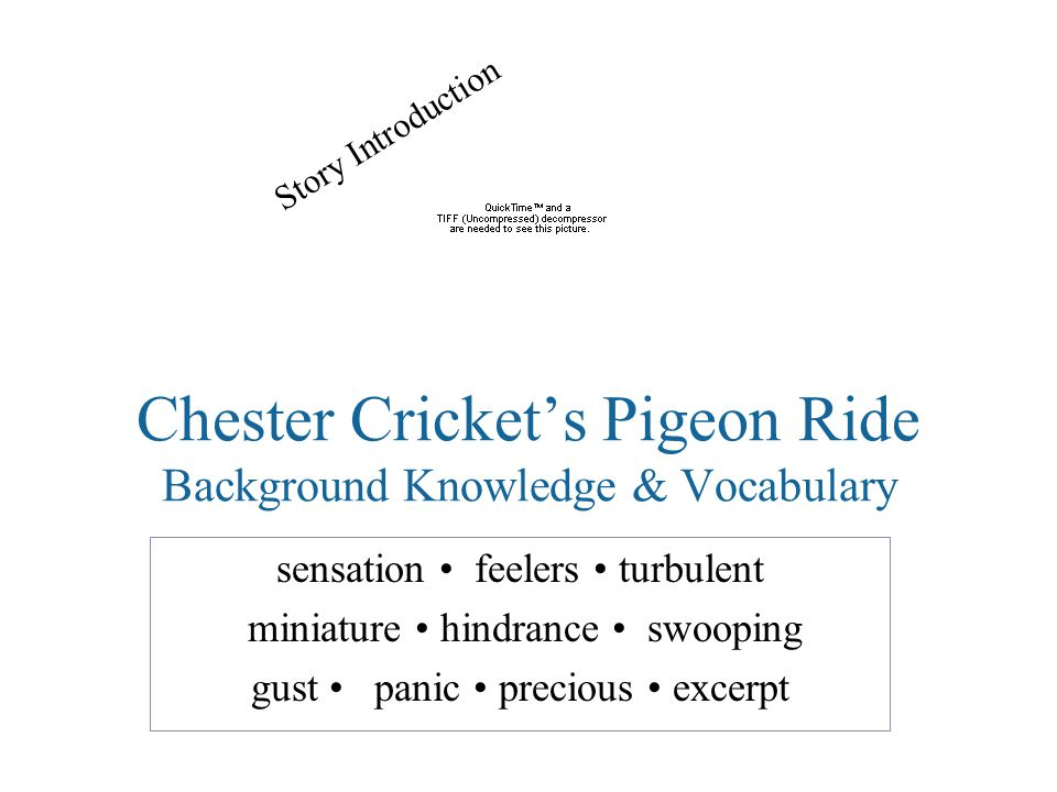 Chester Cricket's Pigeon Ride Background Knowledge & Vocabulary sensation feelers turbulent miniature hindrance swooping gust panic precious excerpt Story Introduction