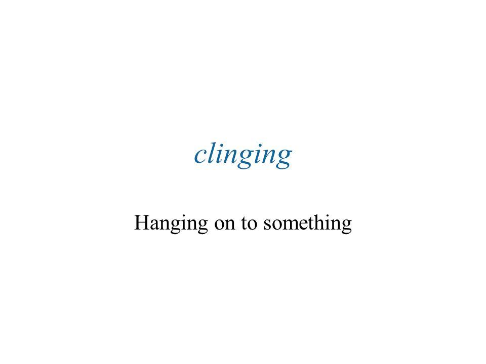 Hanging on to something