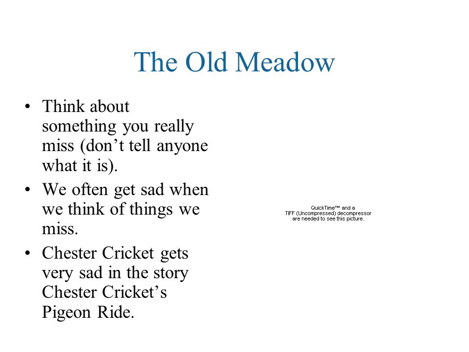 The Old Meadow Think about something you really miss (don't tell anyone what it is).