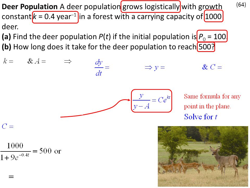 Deer Population A deer population grows logistically with growth constant k = 0.4 year −1 in a forest with a carrying capacity of 1000 deer. (a) Find