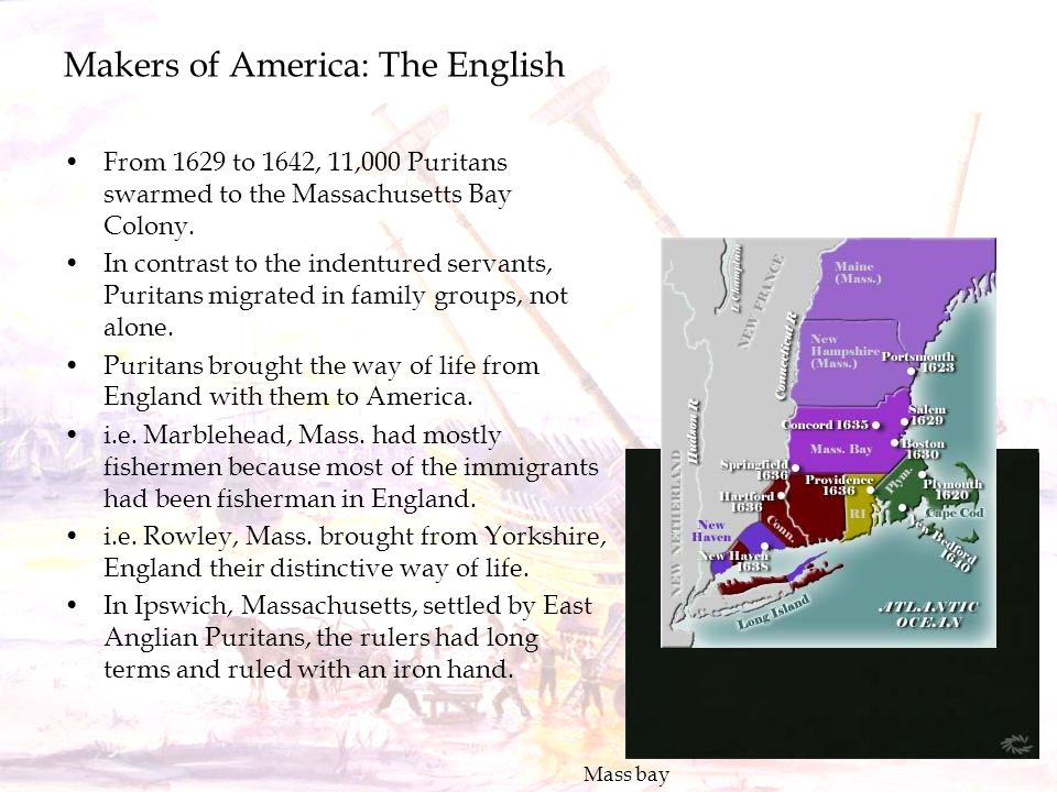 Makers of America: The English From 1629 to 1642, 11,000 Puritans swarmed to the Massachusetts Bay Colony. In contrast to the indentured servants, Pur