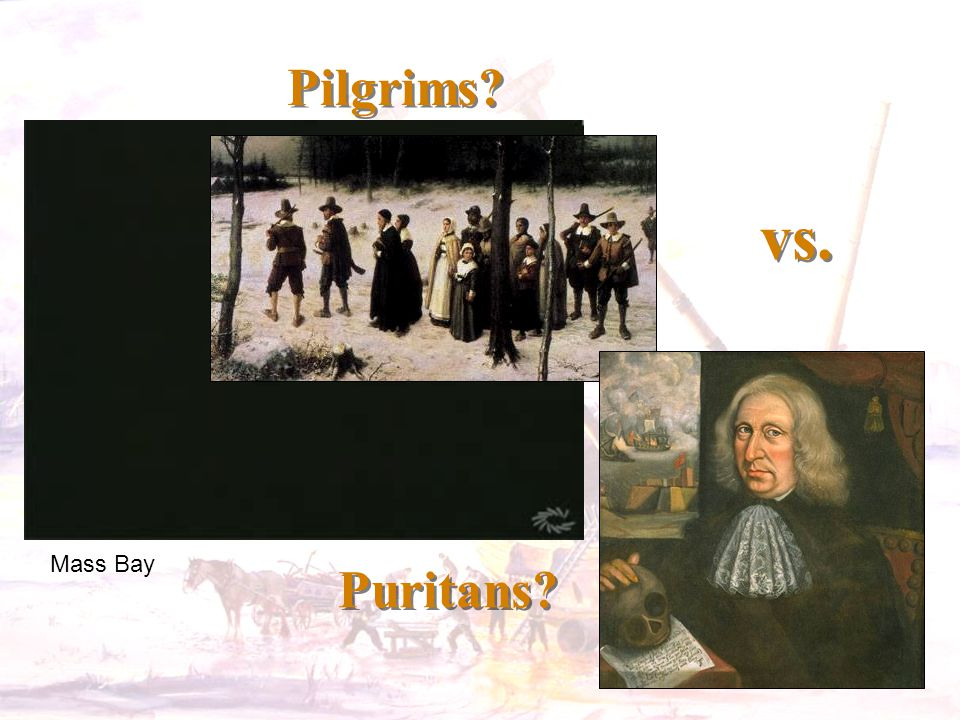 Pilgrims? vs. Puritans? Mass Bay