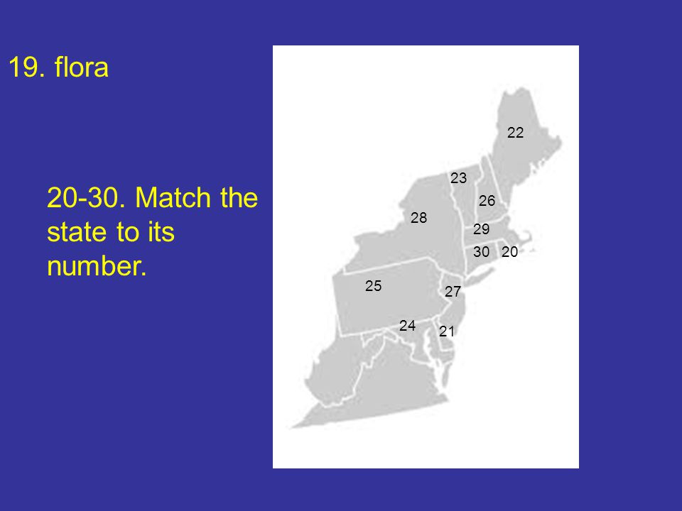 19. flora 20-30. Match the state to its number. 22 30 29 28 27 26 25 24 23 21 20