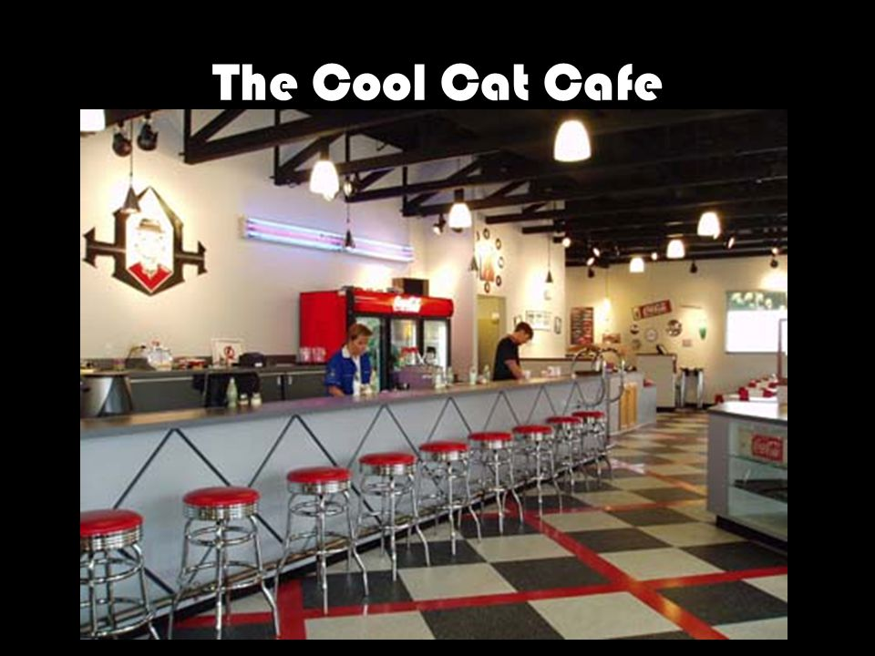 The Cool Cat Cafe