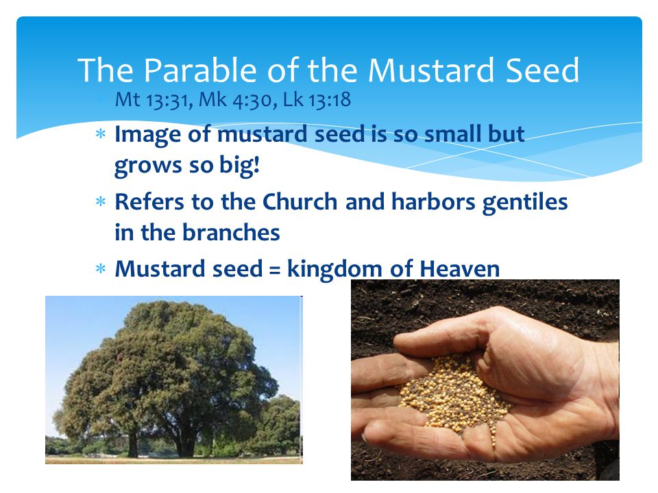  Mt 13:31, Mk 4:30, Lk 13:18  Image of mustard seed is so small but grows so big.