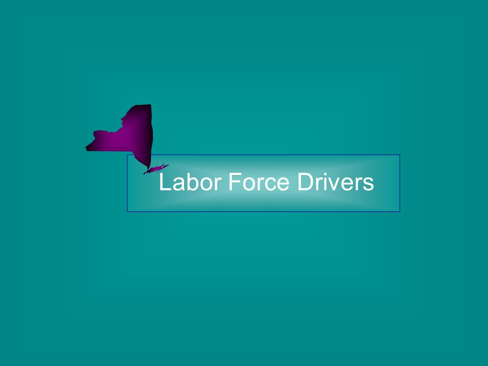 Labor Force Drivers