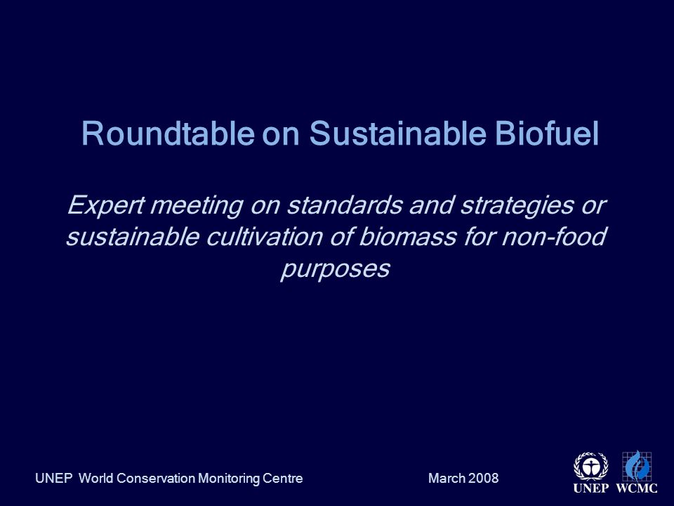March 2008UNEP World Conservation Monitoring Centre Roundtable on Sustainable Biofuel Expert meeting on standards and strategies or sustainable cultivation of biomass for non-food purposes