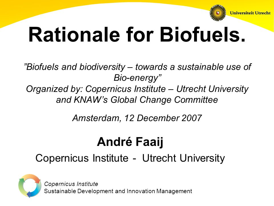 Copernicus Institute Sustainable Development and Innovation Management Rationale for Biofuels.
