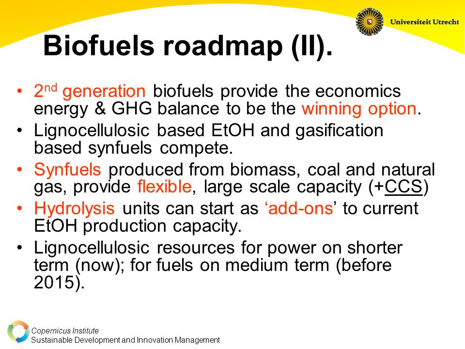 Copernicus Institute Sustainable Development and Innovation Management Biofuels roadmap (II).