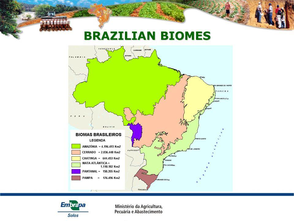 BRAZILIAN BIOMES