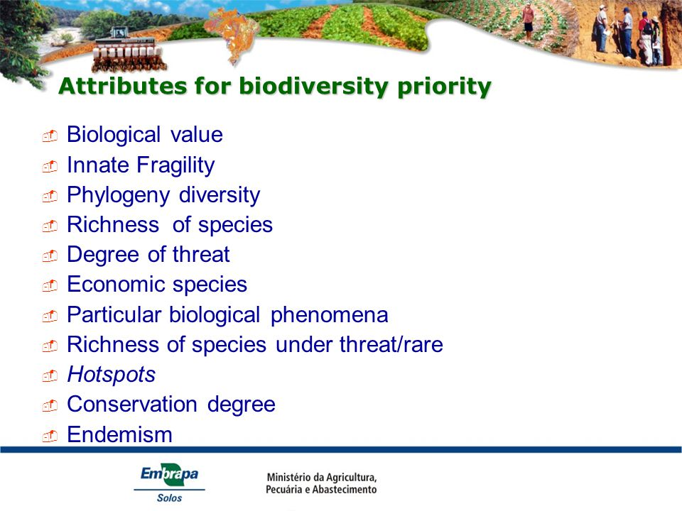 Attributes for biodiversity priority  Biological value  Innate Fragility  Phylogeny diversity  Richness of species  Degree of threat  Economic species  Particular biological phenomena  Richness of species under threat/rare  Hotspots  Conservation degree  Endemism