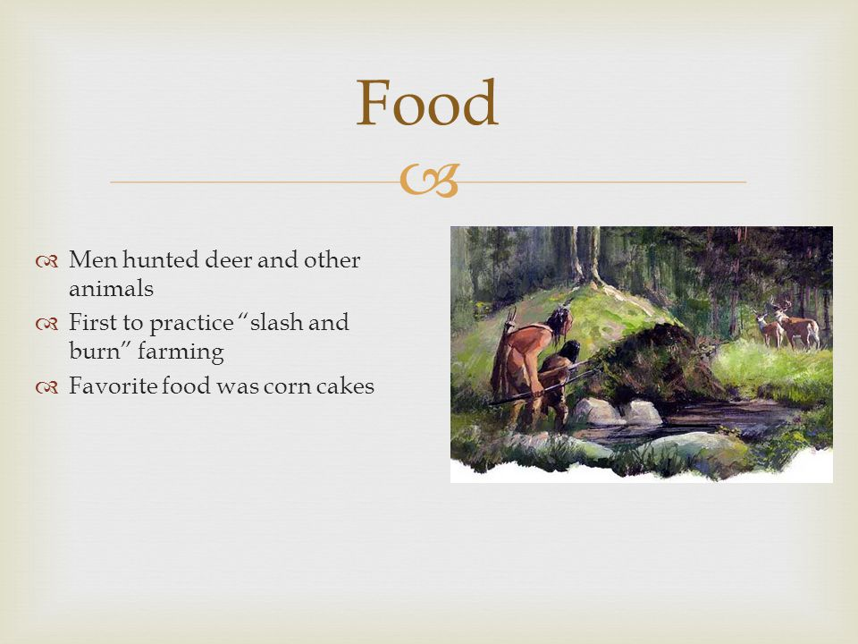   Men hunted deer and other animals  First to practice slash and burn farming  Favorite food was corn cakes Food